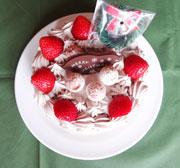 クリスマスケーキ6号生チョコタイプ